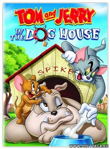 мультфильмы для взрослых смотреть онлайн бесплатно в хорошем качестве: